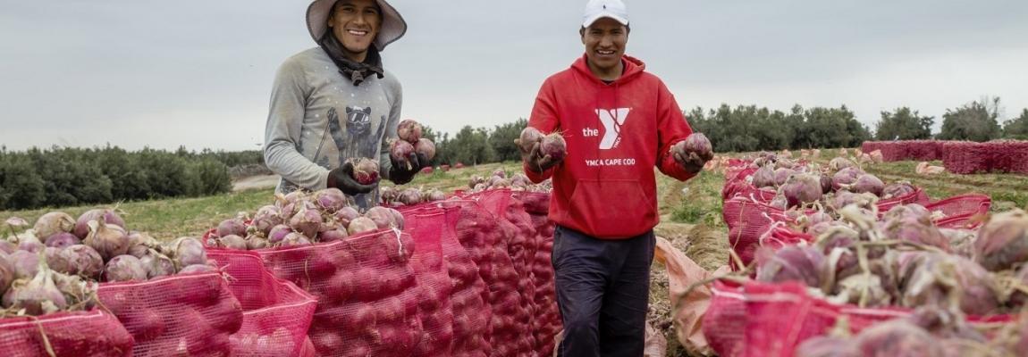 Población Beneficiada por el proyecto de cebollas